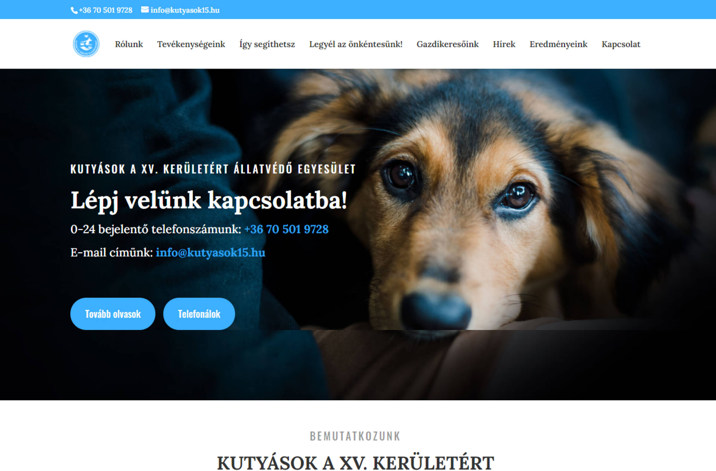 kutyasok15.hu honlapkép